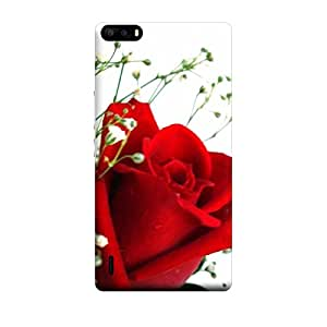 Ebby Premium Printed Mobile Back Case Cover With Full protection For Huawei Honor 6 Plus (Designer Case)