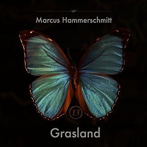 Grasland Hörbuch