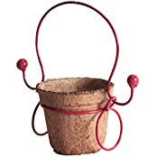 Pinwheel's Metal Coir Ruby Red Bal-T Planter