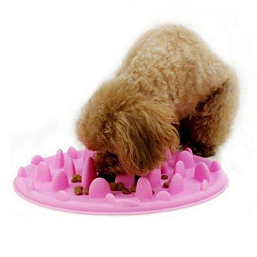 Dr.RanRan 21cm Silicone morbido Cani/Gatti Ciotola Portatile Animali Vassoio Evitare di Animale da Mangiare Troppo e Rimpinzarsi Slow Feeder Dog Disegno Fiore - Rosa