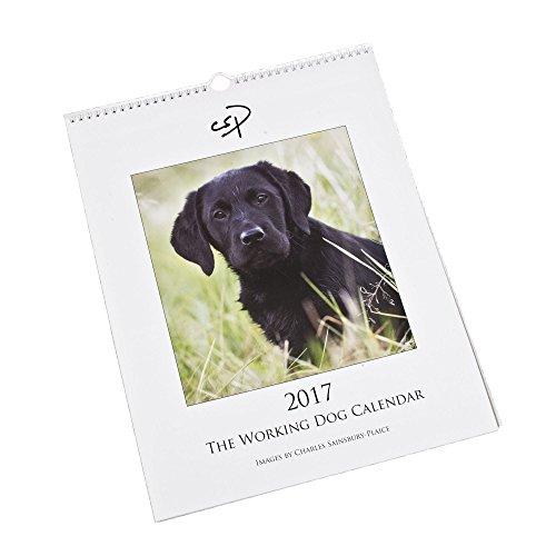 the-working-dog-calendar-2017-by-charles-sainsbury-plaice