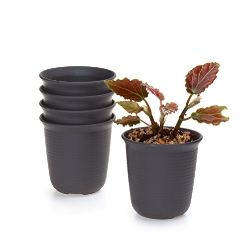 t4u-9cm-plastic-round-sucuulent-plant-pot-cactus-plant-pot-flower-pot-container-planter-dark-brown-p