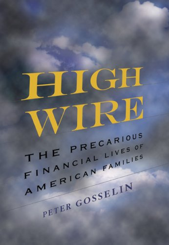 High Wire: The Precarious Financial Lives of American Families