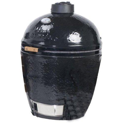 Primo 779 Ceramic Kamado Charcoal Smoker Grill,