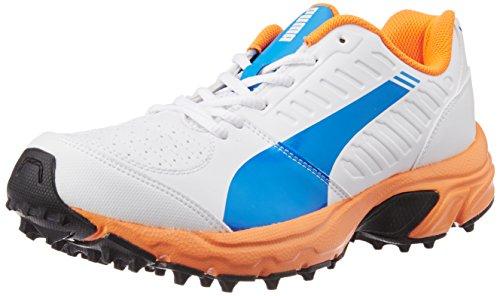Buy puma cricket shoes e41f9531a