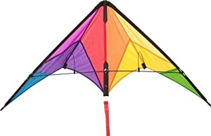 HQ Kites and Designs HQ Beach and Fun Sport Kite (Calypso II Radical) at Sears.com