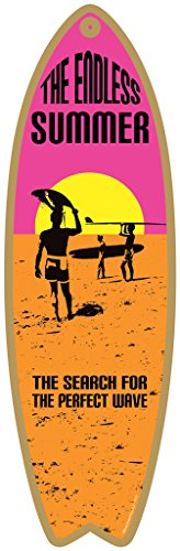 The Endless Summer - The search for the perfect wave
