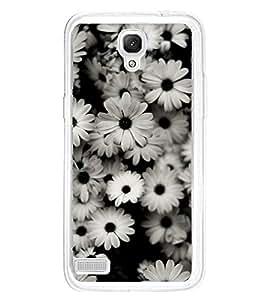 Beautiful White Flowers 2D Hard Polycarbonate Designer Back Case Cover for Xiaomi Redmi Note :: Xiaomi Redmi Note 4G