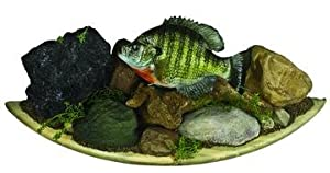 HQ Taxidermy CBK17.0-DW 17-Inch Crappie Replica Wall Mount with Driftwood by HQ Taxidermy