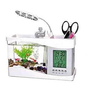 In killifish e il desktop compatto mini acquario di pesci for Vaschetta per pesci rossi prezzi