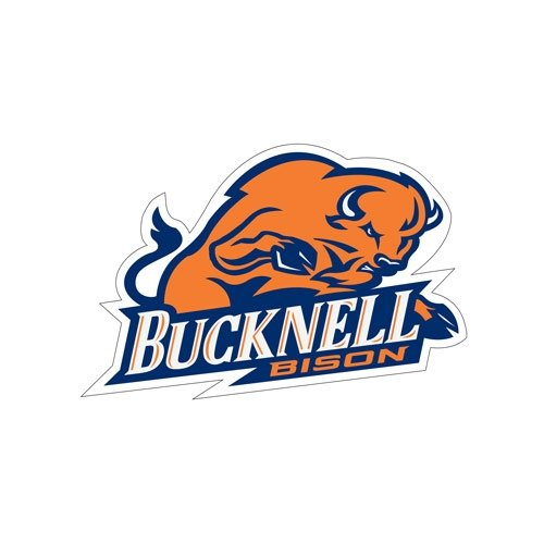 Bucknell Medium Magnet 'Bucknell Full Bison' back-472287
