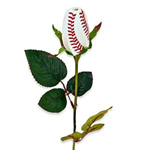 Baseball Rose - Flower
