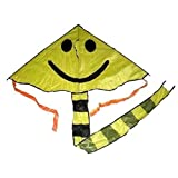 2 Pieces Of Huge Sport Outdoor Flying Yellow Smile Face Kite With String And Handle