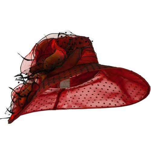Polka Dot Designed Flower Detailed Organza Hat - Red W27S45C