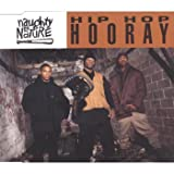 Naughty by Nature Hip hop hooray (incl. 3 versions, 1993)
