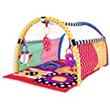 Sassy Discover and Crawl Sensory Tunnel (Discontinued by Manufacturer)