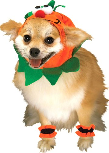 Pet Costumes - Pumpkin Costume for Dogs or Cats
