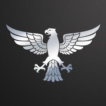 Heraldic Eagle... Chrome Mirror (10 X 6.2 inch) W9595