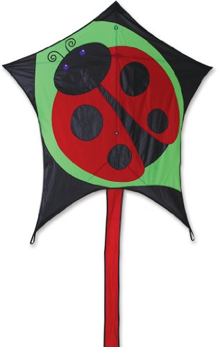 Premier 45971 5-Sided Polygonal Penta Kite with Solid Fiberglass Frame, Dottie