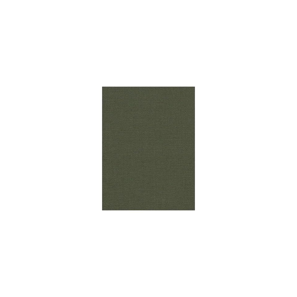 Robert Allen RA Canvas Duck   Jade Fabric