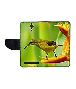 KolorEdge Printed Flip Cover For Asus Zenfone C Multicolor - (47KeMLogo09307ZenC)