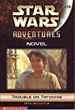 Trouble on Tatooine (Star Wars Adventures, 10)