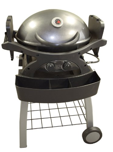 Sq220 Twin Grill Grey Portable 310-Square-Inch 20,000-Btu Liquid-Propane Gas Grill With Cart Frame front-638991