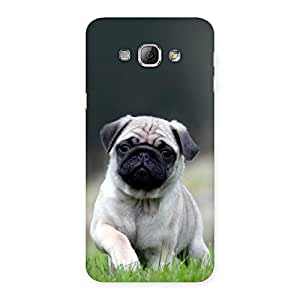 Gorgeous Pug Dog Grass Multicolor Back Case Cover for Galaxy A8