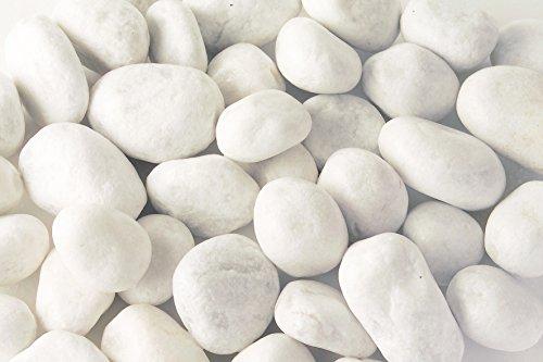 carrara-ghiaia-40-mm-20-kg-bianco-marmo-grit-garden-world-gabion-imbottitura-world-riegel-berger-da-