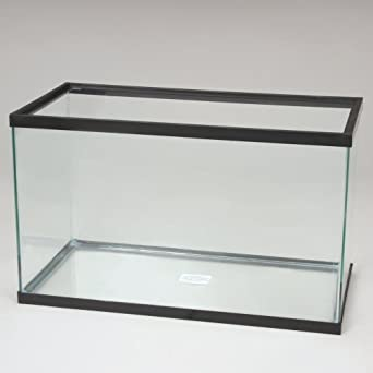 Aquarium tank glass 5 1 2 gal industrial for 5 gallon glass fish tank
