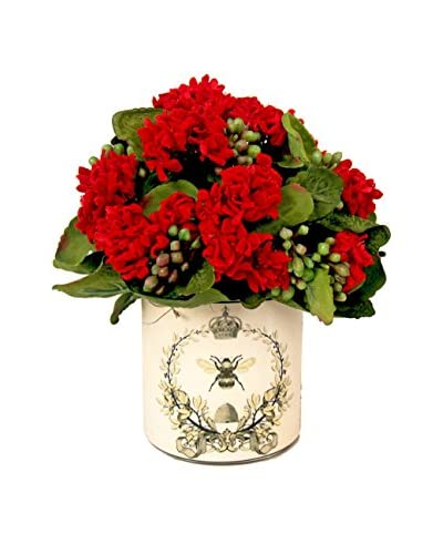 Creative Displays Kalanchoe In Label Pot, Red