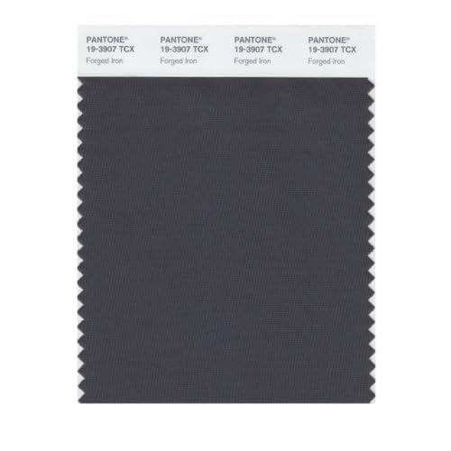 Amazon Com Pantone 19 3907 Tcx Smart Color Swatch Card Iron Color