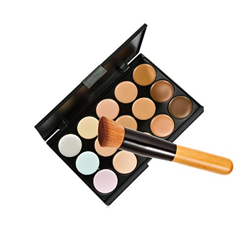 15 Colors Makeup Concealer Foundation Cream Cosmetic Palette Set Tools