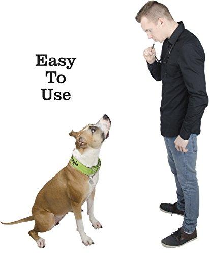 Dog Whistle To Stop Barking And Training Ultrasonic Bark