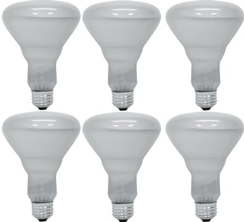 GE Lighting 24705 65-Watt 470/360-Lumen BR30 Commercial Indoor Reflector Floodlight Bulb, Soft White, 6-Pack (Incandescent Light Bulbs 60w compare prices)