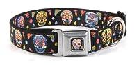 Thaneeya McArdle Colorful Sugar Skulls Repeating on Black Dog Collar by Buckle Down