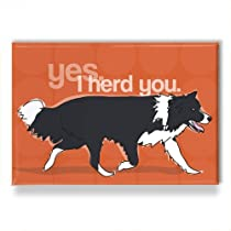 Border Collie Art - Refrigerator Magnets with Funny Sayings - Yes I Herd You