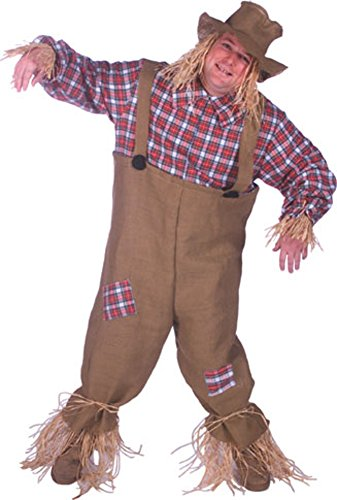 Men's Scarecrow Costume Size: Adult Standard