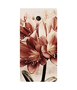 Vintage Flowers Gionee Elife E8 Case