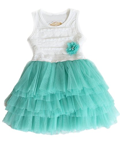 Hot Kids Toddler Girls Princess Shell Dress Party Flower Lace Dresses (8#Advice4-5 Years, Light Blue)