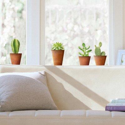 vinilos-decorativos-cactus-window-decal-tamano-69-x-24-cm