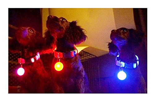 カラビナ式 LED セーフティーライト ペット用光るライト 夜間の安全グッズ 4色「901-0001」 (ピンク)