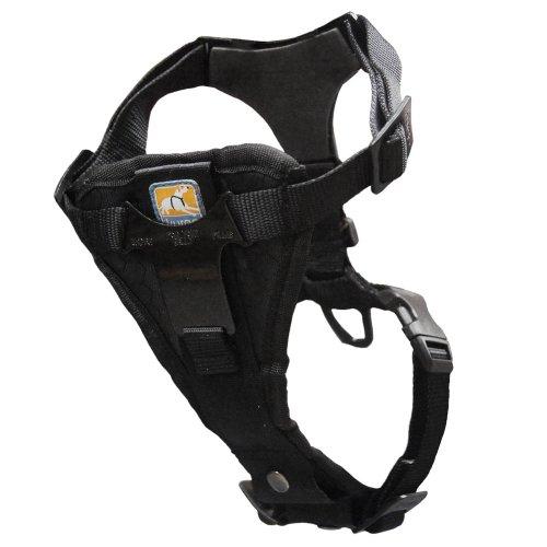 Kurgo Tru Fit Smart Harness with Camera