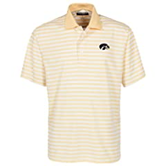 Oxford NCAA Iowa Hawkeyes Mens Y D Veri Cool Bar Stripe with Wicking by Oxford