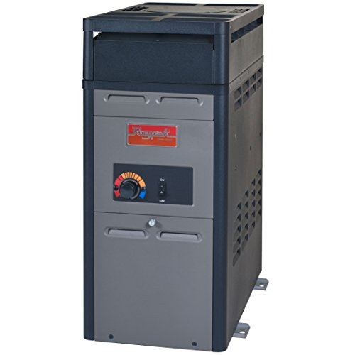 Raypak 106,000 BTU Swimming Pool and Spa Heater - Natural Gas