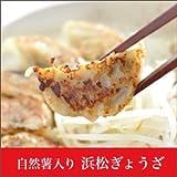 浜松 B級グルメ 浜松餃子 20個入り