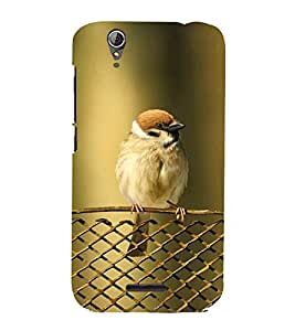 KOOKABURRA BIRD A BEAUTIFUL CREATION OF NATURE 3D Hard Polycarbonate Designer Back Case Cover for Acer Liquid Z630::Acer Liquid Z630S