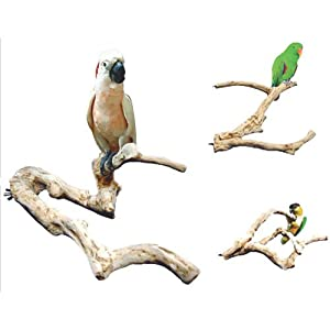 Java Wood Multi Branch Perch - Large - 26 in. x 2.4 in.