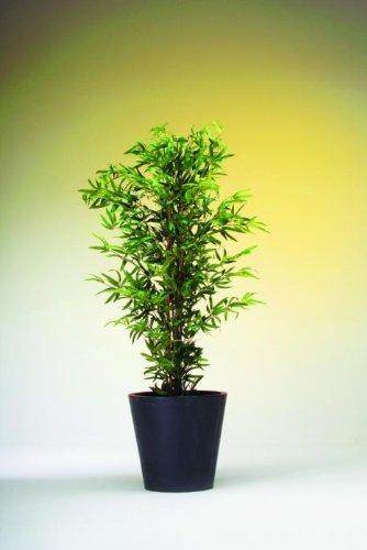 Bambus 5-fach Naturstamm 180cm