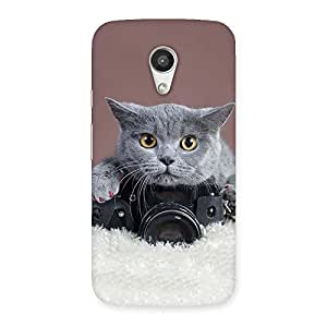 Impressive Kitty Photographer Multicolor Back Case Cover for Moto G 2nd Gen